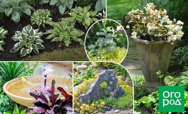 10 Jednostavnih ideja za stvaranje vrta iz snova