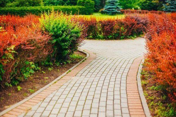 16 nápadov, z ktorých si môžete urobiť krásnu a praktickú záhradnú cestu 14