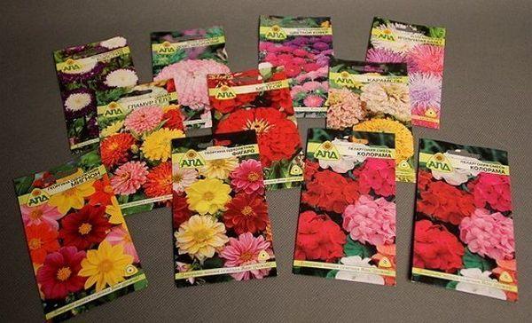 Apríl - čas na siatie kvetov pre sadenice