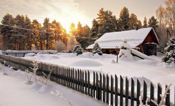 Február snehových zrážok: čoho sa obávať letných obyvateľov a ako chrániť vetvy rastlín