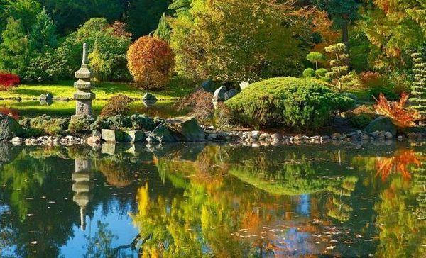 Japanski vrt: koje biljke odabrati i kako zamijeniti neotporne