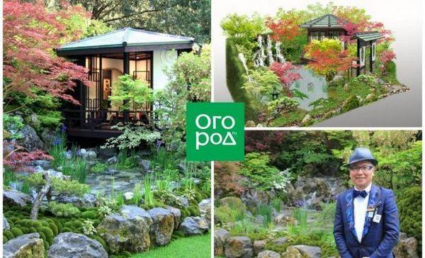 Japanski vrt visoke mode
