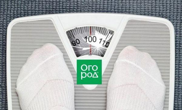 Ako schudnúť v lete? Všetky tajomstvá naraz