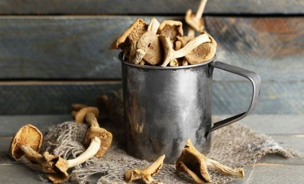 Kako sušiti gljive kod kuće - tajne pravilnog sušenja