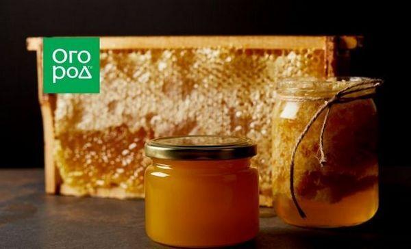 Ako si vybrať med a ako ho správne skladovať