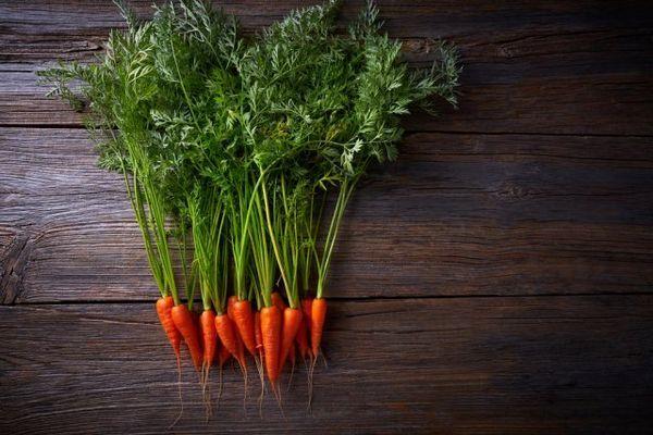 Mini-legume în grădină și pe pervaz - merită să le crești deloc? 10