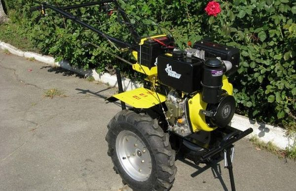 Motoblock: asistență în plantarea, îngrijirea și recoltarea cartofilor