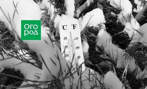 Nu luna mai: răcelile arctice vor acoperi regiunea moscovei