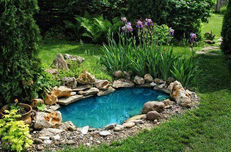 De ce apa din piscina exterioară devine verde și cum să o prevină? 9
