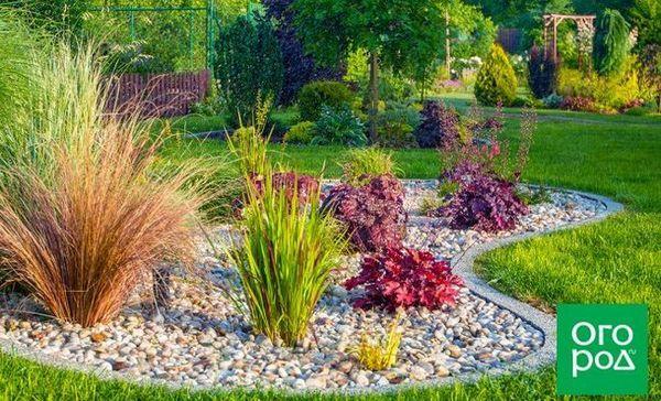 Biljke za mali vrt - 9 trajnica koje ne trebaju puno prostora