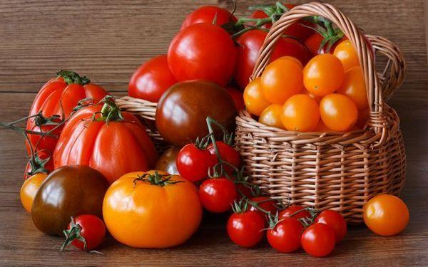 Roșiile în siberia: soiuri, tehnologie agricolă, recoltare și depozitare