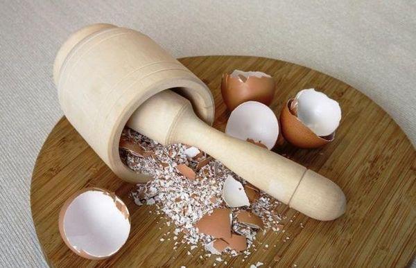 Îngrășământ de coajă de ouă: un ban pentru grădină