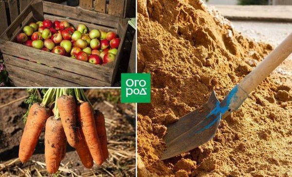 Aký je najlepší spôsob skladovania plodín - 7 osvedčených materiálov